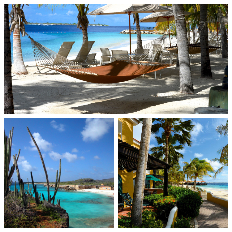 Beachfront Luxury Harbour Village Bonaire boekt u bij Honeymoon-specialisten